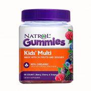 Kẹo dẻo bổ sung vitamin cho bé Natrol Gummies Kids Multi 90v