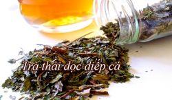 Chia sẻ cách làm trà rau diếp cá từ chuyên gia