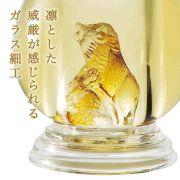Rượu Shochu con heo rừng bên trong chai, độc đáo nhất