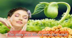 Uống mầm đậu nành có tác dụng gì? Và cái kết