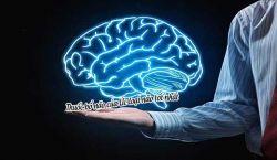 Thuốc bổ não của Úc loại não tốt nhất? Và sự thật đằng sau