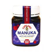 Mật ong Manuka MGO 300+ Active Honey 250g của Úc