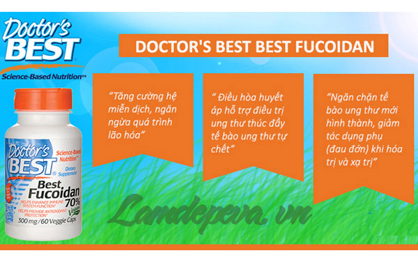 cong dung Doctor's best best fucoidan 70%